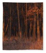 Forest At Sunset Fleece Blanket