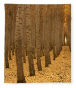 Forest Cathedral - One Fleece Blanket