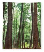 Forest In Early Morning, Wetlands Fleece Blanket