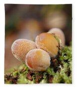 Forest Mushrooms Fleece Blanket