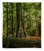 Forest Of Cathedral Grove Collection 1 Fleece Blanket