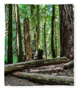 Forest Of Cathedral Grove Collection 2 Fleece Blanket