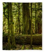 Forest Of Cathedral Grove Collection 3 Fleece Blanket