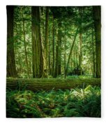 Forest Of Cathedral Grove Collection 7 Fleece Blanket
