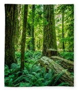 Forest Of Cathedral Grove Collection 8 Fleece Blanket