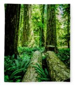 Forest Of Cathedral Grove Collection 9 Fleece Blanket