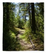 Forest Path In Spokane 2014 Fleece Blanket