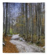 Forest Path Fleece Blanket