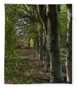 Forest Walk Hdr Fleece Blanket