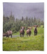 Four Brothers Fleece Blanket