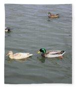 Four Ducks Fleece Blanket