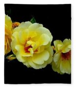 Four Stages Of Bloom Of A Yellow Rose Fleece Blanket