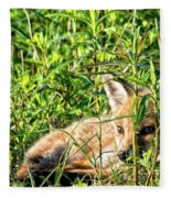 Red Fox Pup Hiding Fleece Blanket