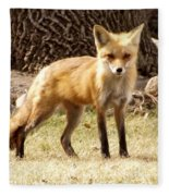 Foxy Momma Fleece Blanket