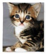 Foxy The Kittens Big Eyes Fleece Blanket