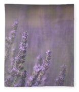 Fragrance Fleece Blanket