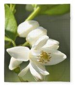 Fragrant Orange Blossoms Fleece Blanket