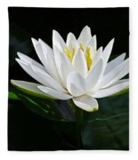 Fragrant Water-lily Fleece Blanket
