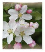 Framed Apple Blossom Fleece Blanket