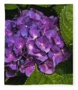 Framed Purple Blue Hydrangea Blossom Fleece Blanket