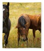 Free Happy Horse Joy On Samsoe Island Denmark  Fleece Blanket
