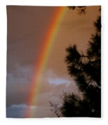 Free Rainbow 2 Fleece Blanket