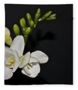 Freesia On Black Fleece Blanket