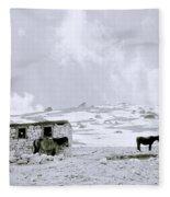 Freeze Fleece Blanket