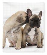 French Bulldog Puppies Fleece Blanket