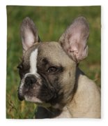 French Bulldog Puppy Fleece Blanket