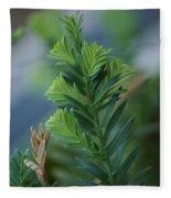 Fresh Growth Redwood Fleece Blanket