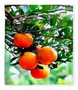 Fresh Orange On Plant Fleece Blanket
