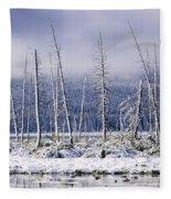 Fresh Snowfall And Bare Trees Fleece Blanket