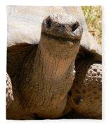 Friendly Tortoise Fleece Blanket