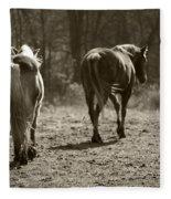 Friends Fleece Blanket