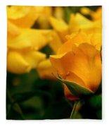 Friendship Roses Fleece Blanket