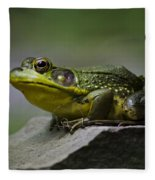 Frog Outcrop Fleece Blanket