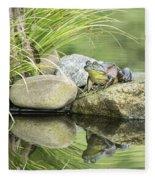 Bull Frog On A Rock Fleece Blanket