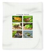 Frogs - Boxed Cards Fleece Blanket
