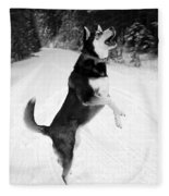 Frolicking In The Snow - Black And White Fleece Blanket
