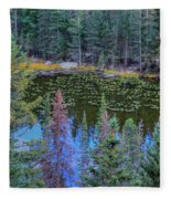 From Above Fleece Blanket