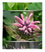 From Bud To Bloom - Bee Balm Named Panorama Pink Fleece Blanket