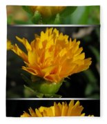 From Bud To Bloom - Coreopsis Named Early Sunrise Fleece Blanket