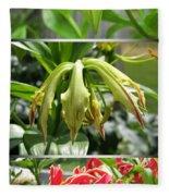 From Bud To Bloom - Gloriosa Named Rothschildiana Fleece Blanket