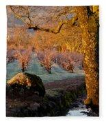 Frost In The Valley Of The Moon Fleece Blanket