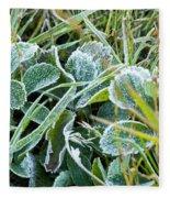 Frost On Strawberry Leaves Fleece Blanket