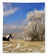 Frost Fleece Blanket