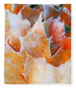 Frost Touched Fleece Blanket