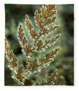 Frosted Fern Fleece Blanket