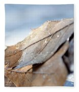 Frosty Leaves In The Morning Sunlight Fleece Blanket